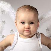 Постер, плакат: baby Ангел