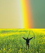 pic of gaul  - Rainbow on Hawaii - JPG