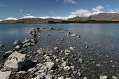 stock photo of mckenzie  - Lake Tekapo  - JPG