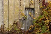 Abstract Strange Background. Old Wooden Door.old Door. Old Doors. Image Of Wooden Door. Old House. O poster