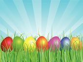 picture of easter-eggs  - Colourful easter eggs in grass against blue sky - JPG