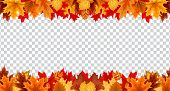 Autumn Leaves  Border Frame With Space Text On Transparent Background. Can Be Used For Thanksgiving, poster