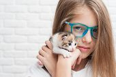 Pretty Caucasian Small Girl In Trendy Blue Glasses Holding Little Kitty Cat Near Her Face poster