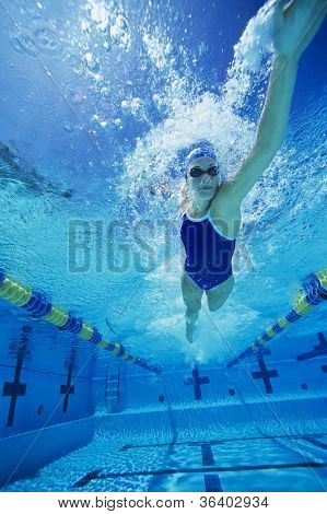 Female swimmer gushing through water in pool