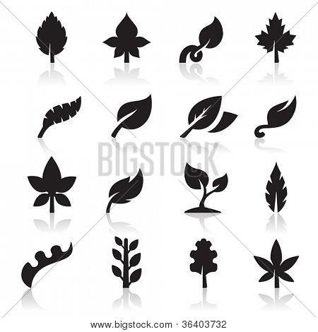 Blatt-Symbol