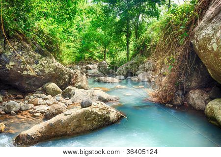 Stream among rainforest.Bali. Indonesia