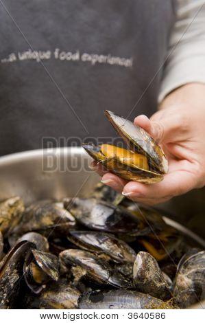 Freshly Prepared Black Mussels
