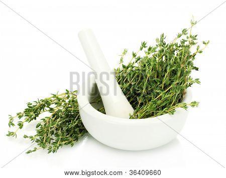 argamassa com tomilho fresco verde, isolado no branco