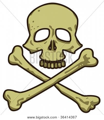 Skull. Pirate Sign. Marine Vector Collection.