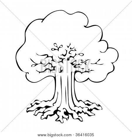 Vector hand drawn old black tree silhouette isolated on white background