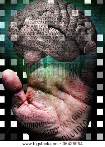 Human Binary Hand and Brain