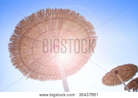 Hut sunroof umbrella on dried grass with lens flare backlight