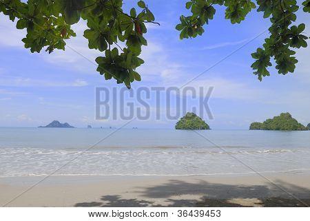 tropical beach in the summer