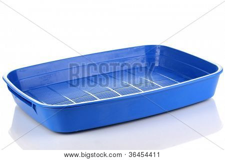 Blue plastic litter cat isolated on white