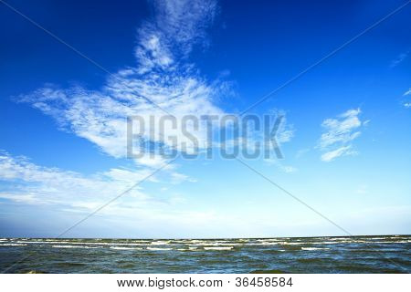 Nature seascape with seagull in blue sky