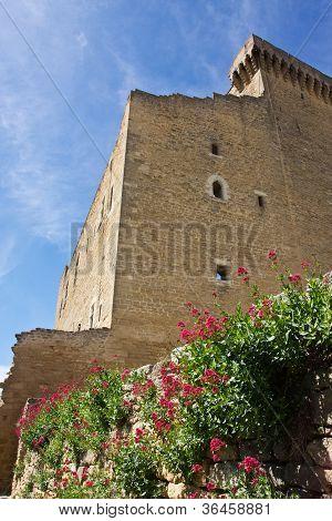 Castle In Ch�teauneuf-du-Pape