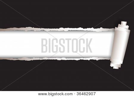 vector background torn paper