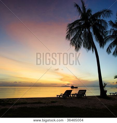 Beautiful sunrise at Beach with palms