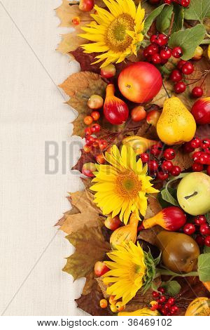 Autumn frame with fruits pumpkins and sunflowers
