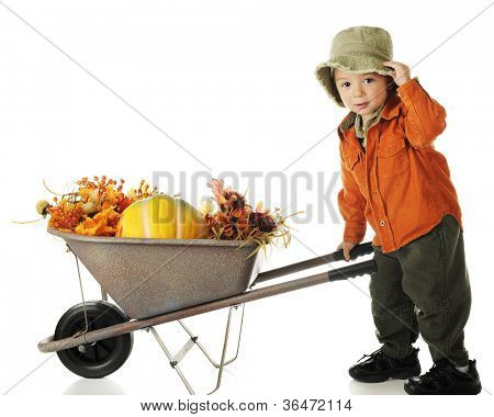 An adorable preschooler dressed in fall colors, tipping his hat as he pushes a wheelbarrow filled with autumn foliage and a pumpkin.  On a white background.