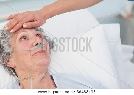 Nurse touching the forehead of a patient in hospital ward