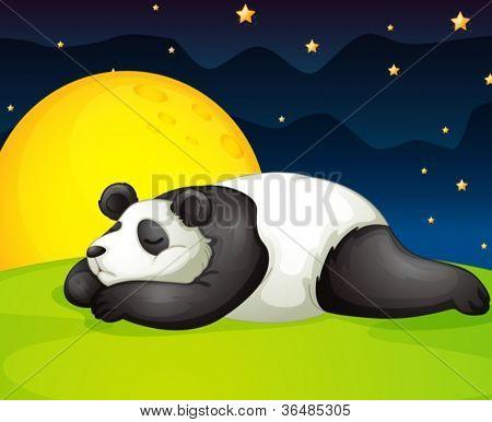illustration of a panda resting in night