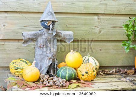 Tin Scarecrow