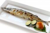 image of grated radish  - broiled pacific saury with salt - JPG