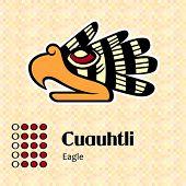 Постер, плакат: Ацтекский календарь символы Cuauhtli или Орел 15