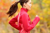 stock photo of ponytail  - Running in Fall - JPG