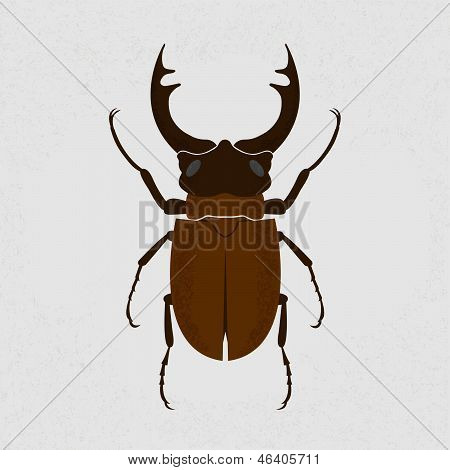 Stag beetle, the largest beetle , eps10 vector format
