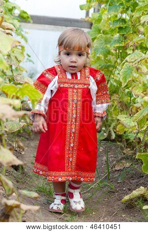 Little girl in Russian national dress collects cucumbers in a hothouse