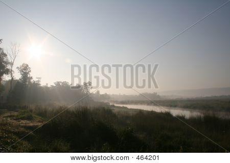 Selva Sunrise