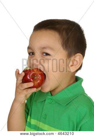 bengel Essen Apple, drei Jahre alt