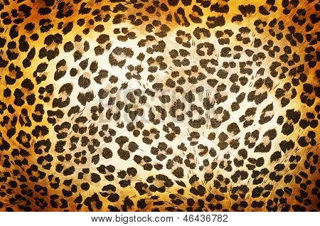 Cheetah Pattern