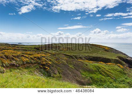 Wales Coastal Path view towards Caerfai Bay Pembrokeshire West Wales UK