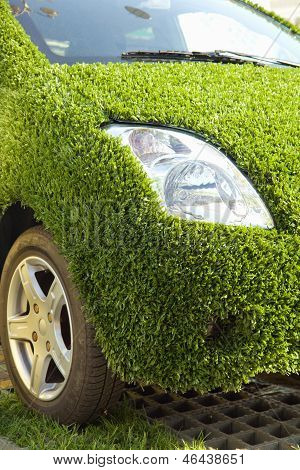 Eco Car With Green Grass