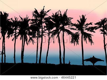 Sunset on the beach of Persian Gulf