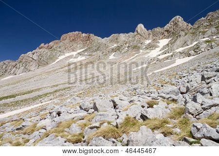 Alpine Rocky Slope