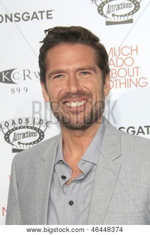 LOS ANGELES - JUN 5: Alexis Denisof at the screening of Lionsgate and Roadside Attractions' 'Much Ado About Nothing' on June 5, 2013 in Los Angeles, California