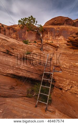 Metal Ladder on the Corona Arch Trail