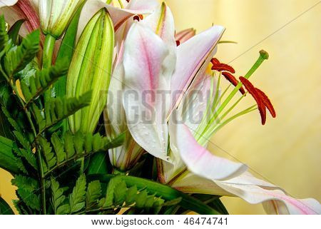 Bunch Of Lillies Closeup