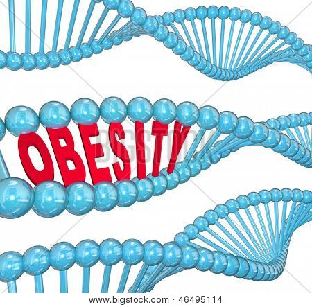 The word Obesity in red letters hidden within a blue DNA strand to illustrate the hereditary nature of fat and the condition of being very heavy