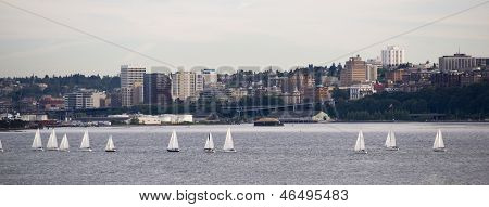 Sailboat Regatta Commencement Bay Puget Sound Dpwntown City Tacoma Washington