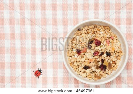 Fruits Granola