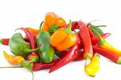 foto of jalapeno peppers  - A bunch of fresh peppers including jalapenobell and serrano - JPG