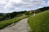 stock photo of household farm  - The road to the Italian farmer household - JPG
