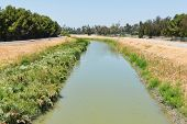 foto of tomas  - San Tomas Aquino Creek in summer Santa Clara California - JPG