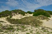 stock photo of nana  - NaNa Dunes at Historic American Beach in Nassau County - JPG