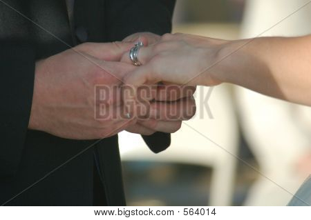 Wedding Couple's Hands